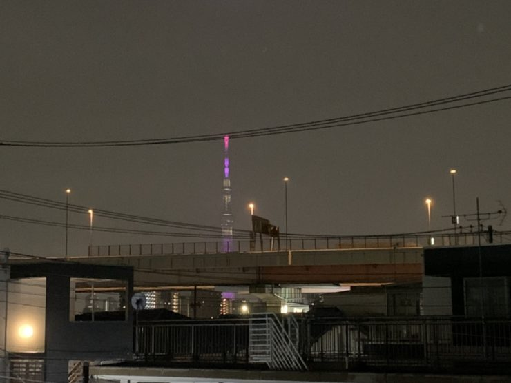 BTS7周年で全国各地のタワーが点灯!!